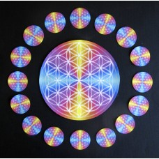 Flower of Life 16 Mandalas
