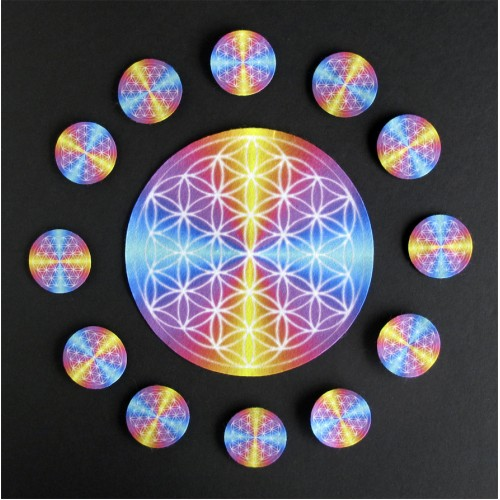 Flower of Life 12 Mandalas